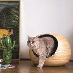 DANDYBALL-BLEUE-CAT BED 03
