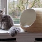 DANDYBALL-BLEUE-CAT BED BAMBOO LACQUER 04