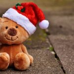 christmas_teddy_soft_toy_santa_hat_funny-1263569