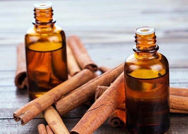 Cinnamen oil