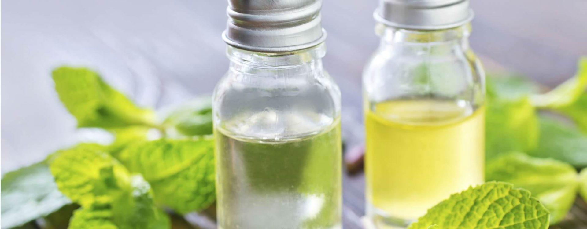 Vietnamese mint oil