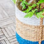 Farmhouse basket #5c